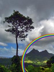Cum sa faci un curcubeu Rainbow3