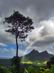 Cum sa faci un curcubeu Rainbow4b