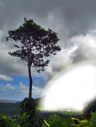 Adding white inside rainbow
