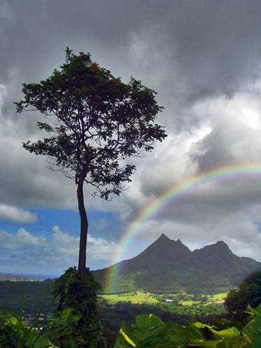 Cum sa faci un curcubeu Rainbow6