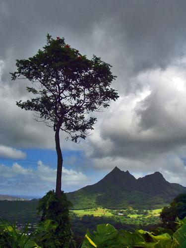 Landscape photograph